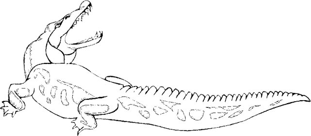 Free Alligator Graphics Animated Alligators Clipart