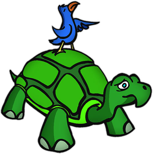 green turtle and a bird