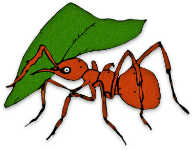 free ant clipart black ants rh fg a com clip art ants and spiders free clipart of ants