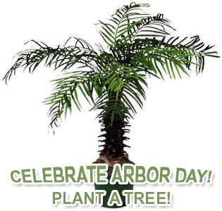 celebrate Arbor Day - Plant a Tree