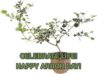 Happy Arbor Day - New Tree to Plant