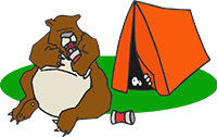 bear and camper