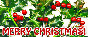 Merry Christmas holly berries