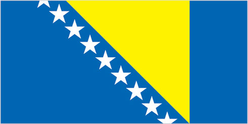 large bosnia and herzegovina flag