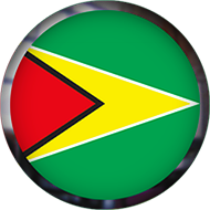 Guyana Flag button round with frame