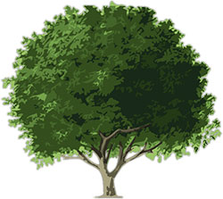 Animated tree. Free trees clipart flowers