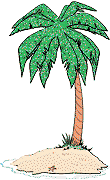 palm tree on a small island