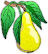 pear with leaves jpg image