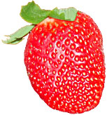 single strawberry