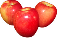 3 jazz apples photo clipart image