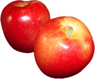 2 jazz apples clipart