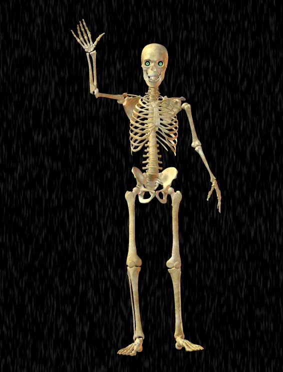 skeleton waving