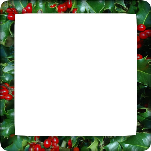 holly border with rounded corners
