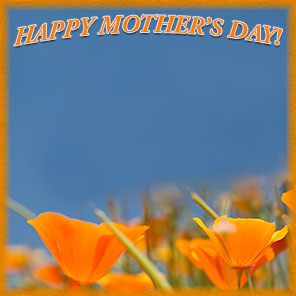 Happy Mother's Day with orange flowers