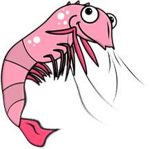 free shrimp gifs shrimp animations clipart rh fg a com Funny Shrimp Clip Art Oyster Clip Art
