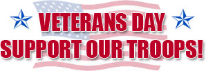 Veterans Day Support Our Troops