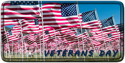Veterans Day American Flags